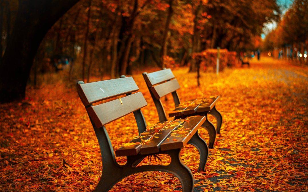 Herbstgruß und Ausblick mit weiteren Informationen